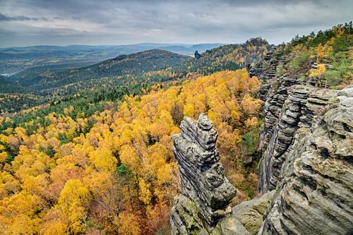 Felstürme im Elbsandsteingebirge überragen herbstlich verfärbten Wald, Gohrisch, Elbsandsteingebirge, Nationalpark Sächsische Schweiz, Sächsische Schweiz, Sachsen, Deutschland