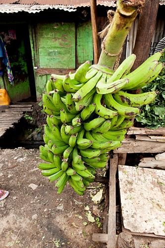 Bananas for sale in the slum, Eastleigh, Nairobi, Kenya