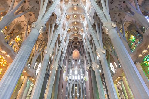 Die vielen Säulen im Inneren der Sagrada Familia in Barcelona, Spanien
