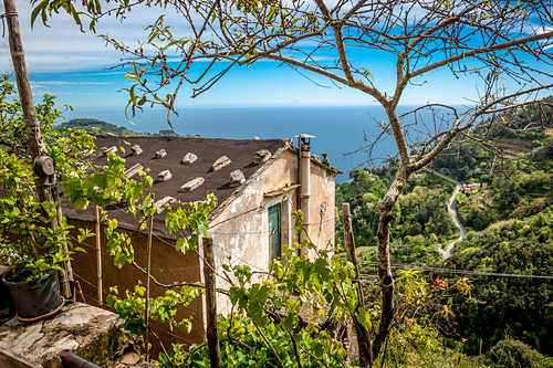 House in the vineyards above Vernazza, Cinque Terre, Italy