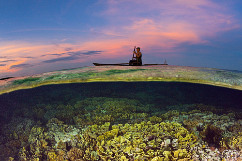 Coral reef at sunset, New Ireland, Papua New Guinea