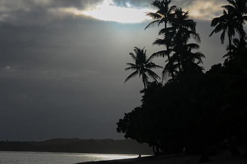 Blick auf Palmen und Pazifik vor dem Tropenregen mit dramatischem Licht, Savusavu, Fiji