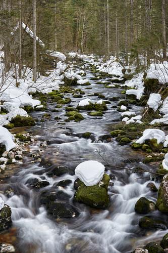 Winterlicher Bachlauf der Pießling, Oberösterreich, Österreich
