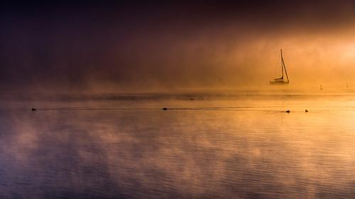Neblige Herbstimmung bei Sonnenaufgang am Starnberger See, Bayern, Deutschland