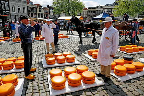 Cheese Market in Gouda, South Holland, Netherlands, Europe