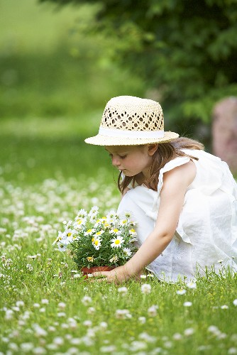 A little girl with daisies in a flowering medow