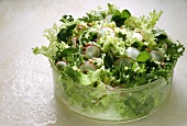 Frisée endive with radishes and eggs
