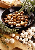 Mushroom Pan Dish Provence Style