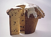 Panettone in a flowerpot (Christmas cake, Italy)