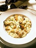 Risotto di mare (mussel risotto), Veneto, Italy