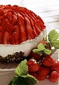 Strawberry dome