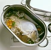 "Cooking a carp ""au bleu"""