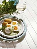 Herb Eggs with new Potatoes and fresh Herbs