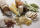 Assorted Legumes and Legume Products; Wheat Flour