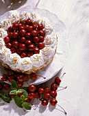 Cherry cream gateau