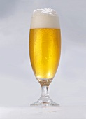 Stem Glass of Beer
