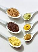 Mustard; Mustard Seeds & Mustard Powder