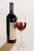 High-class Italian red wine 'Sassicaia' with glass, Italy