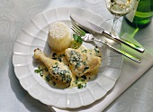 Chicken Fricassee with Spring Herbs