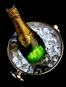 A Bottle of Sparkling Wine in a Champagne Cooler