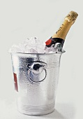 Bottle of Moet in a Champagne Cooler
