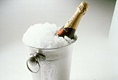 A Bottle of Moet in a Champagne Cooler