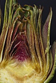 Halved Artichoke (close-up)