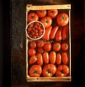 Box with various Kinds of Tomatoes