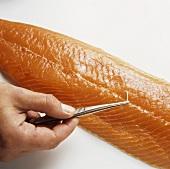 Boning a salmon fillet