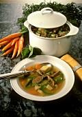 Gardener's Soup