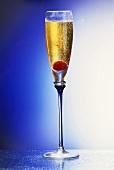 Max Joseph Champagne Cocktail