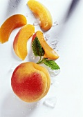 Aprikose, Aprikosenschnitze & Eisstückchen