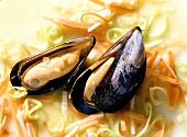 Blue Mussels Rhenish-style