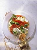 Tomatoes Mozzarella and Basil Appetizer