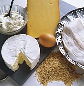 Cheese; Eggs; Quark; Rice & Fish