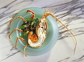 Spiny Lobster Halves with Wild Rice