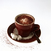 Cappuccino (coffee with frothed milk, Italy)