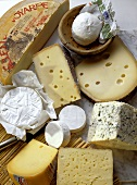 Several Assorted Cheeses