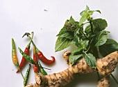 Chilies; Basil & Galanga