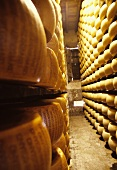 Cheese production in Italy: parmesan ripening in store