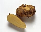 Whole Potato and Potato Cut in Half