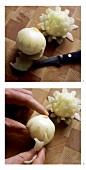 Making onion flowers
