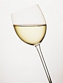 A Glass of Pinot Blanc