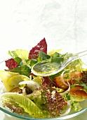Pouring Vinaigrette Sauce over mixed Salad