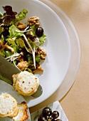 Eichblattsalat; Pfifferlinge & Ziegenkäse