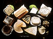 Various types of French cheese