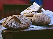Coarse Rye Breads