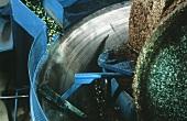 Oliven zu Öl verarbeiten : Oliven in der Mühle