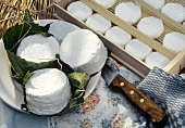 Assorted Goat Cheese; Wooden Box & Plate