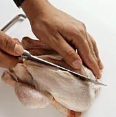 Poussin: removing the breast fillet